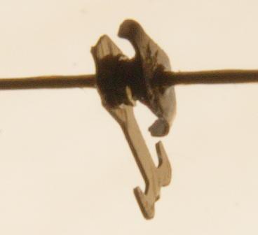 muesum23-14b7.jpg