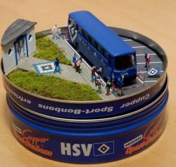 hsv-10