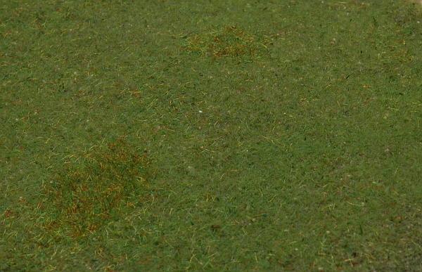 Ein Ausschnitt aus der Wiese: Zu sehen sind zwei Unkrautbereiche aus langen Fasern und im vorderen, rechten Bildteil ein Bereich mit dunkleren kurzen Fasern