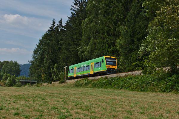 Nach einem kleinen Spaziergang Richtung Bodenmais kommt der Zug 10 Minuten später wieder zurück.